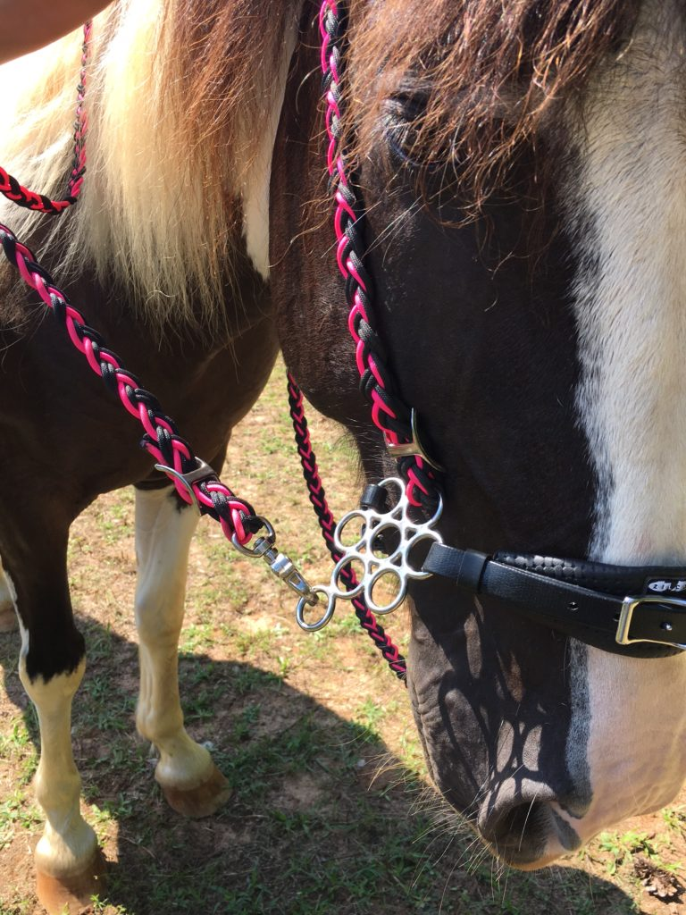 Little S Hackamore Vs Flower Hackamore Bitless Review